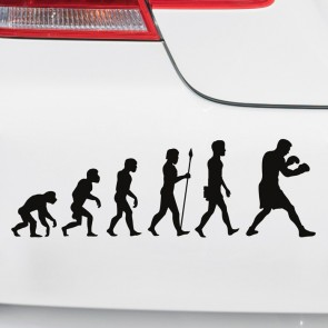 Autoaufkleber Evolution Boxen
