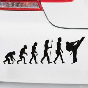 Autoaufkleber Evolution Karate